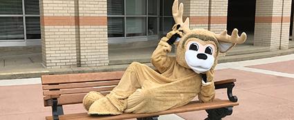Benji WSCC Mascot