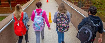 Students on bridge