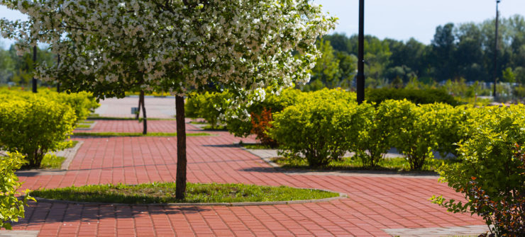 Foundation Launches Paver Campaign